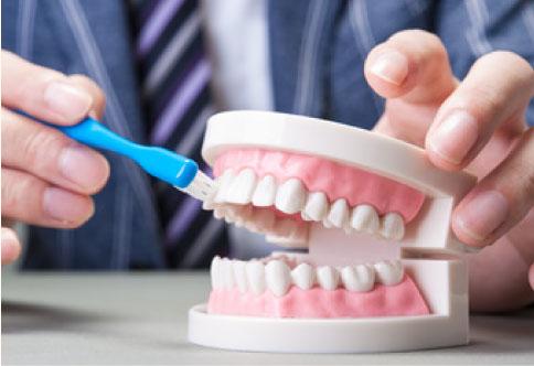 歯周病・虫歯予防②